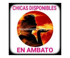 En la ciudad de Ambato tenemos cuatro chicas disponibles para caballeros serios.
